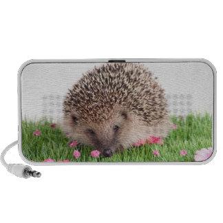 hedgehog speaker system