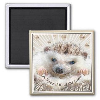 hedgehog special kind of love square magnet