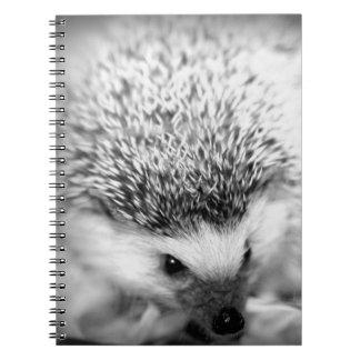 hedgehog spiral notebook