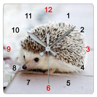 Hedgehog Square Wall Clock