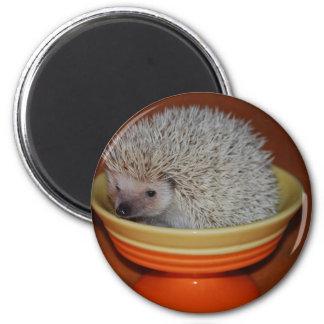 Hedgehog Sundae Magnet