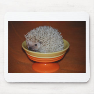 Hedgehog Sundae Mouse Mat