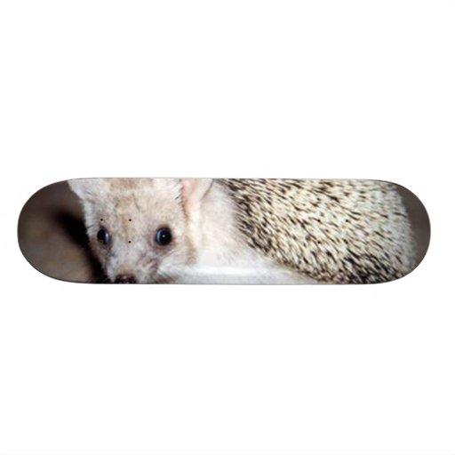Hedgehog - The Spiny Mammal Skateboard Decks