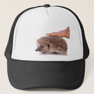 Hedgehog, Trucker Hat