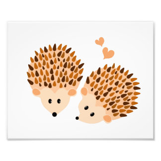 Hedgehogs illustration photo print