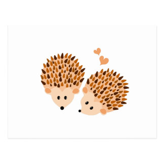 Hedgehogs illustration postcard