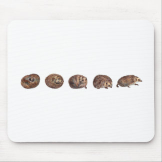Hedgehogs in a line mouse pad
