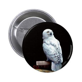 Hedwig on books 6 cm round badge
