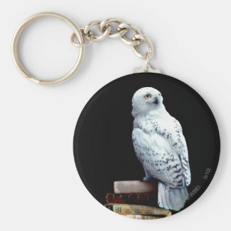Hedwig on books basic round button key ring