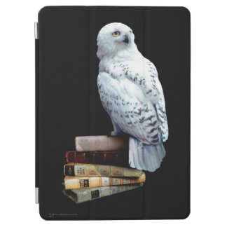 Hedwig on books iPad air cover