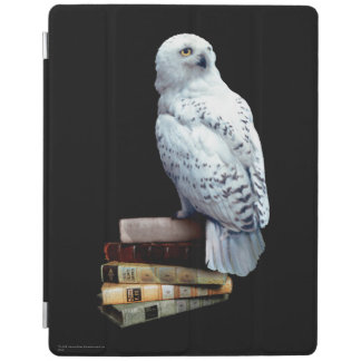 Hedwig on books iPad cover