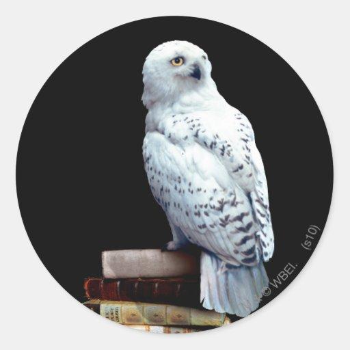 Hedwig on books sticker