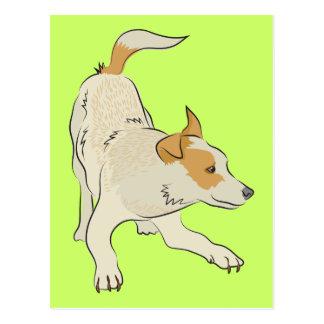 Heeler dog light tan so cute! post cards