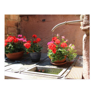 Heidelberg Outdoor Sink Postcard