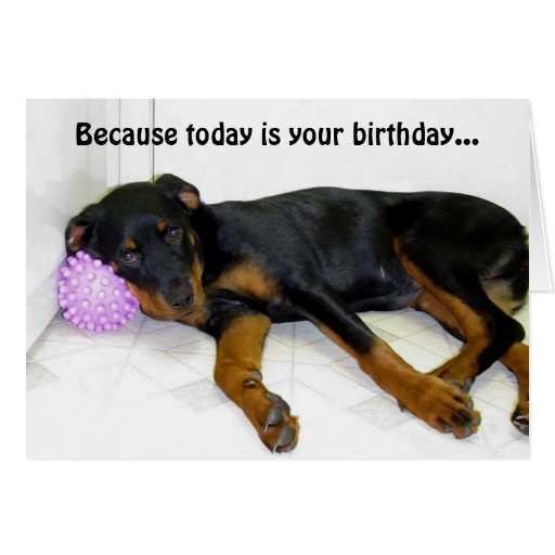 Heidi and Ball Birthday Card
