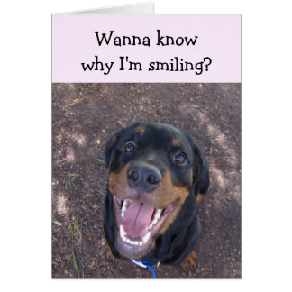 Heidi Happy Rottweiler Valentine's Day Card