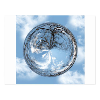 Heights of Heaven with tree clouds sky bubble Postcards