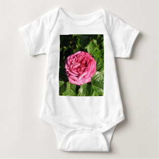 Heirloom Hybrid Tea Rose 027 Shirts
