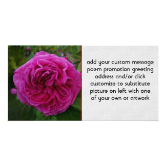 Heirloom Rose Photo Card