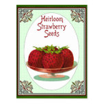 Heirloom Strawberry Seeds Post Card
