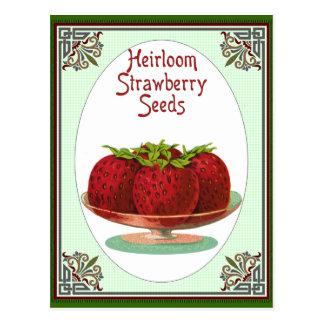 Heirloom Strawberry Seeds Post Card