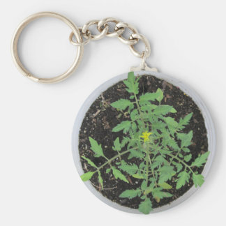 Heirloom Tomato Plant Peace Sign Basic Round Button Key Ring