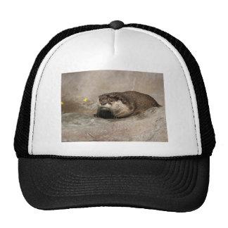 Helaine's Otter Cap
