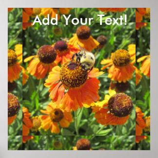 Helenium Bee Orange Flower Poster
