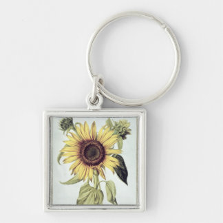 Helianthus Annuus from 'Velins du Roi Vol.36' Key Ring
