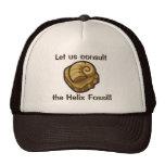 Helix Fossil Cap