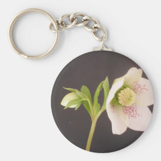 Hellebore Flower white  dark background Basic Round Button Key Ring