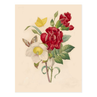 Hellebores and Carnations by Pierre-Joseph Redouté Postcard