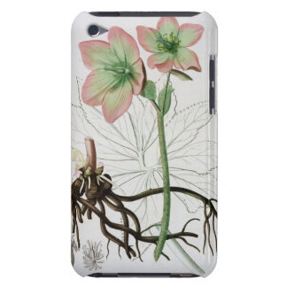 Helleborus Niger from 'Phytographie Medicale' by J iPod Case-Mate Case