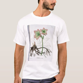 Helleborus Niger from 'Phytographie Medicale' by J T-Shirt