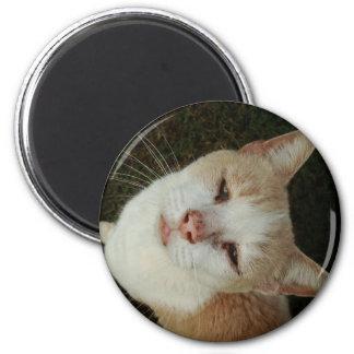 Hello 6 Cm Round Magnet