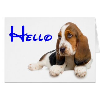 Hello Basset Hound Puppy Dog Note Card