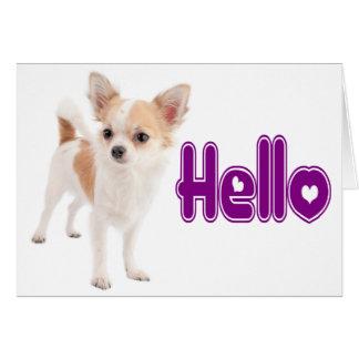 Hello Chihuahua Puppy Dog Blank Notecard