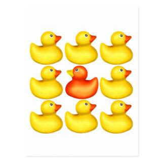 Hello Ducky! Postcard