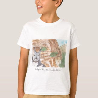 Hello from Bandelier Park, New Mexico ! T-Shirt