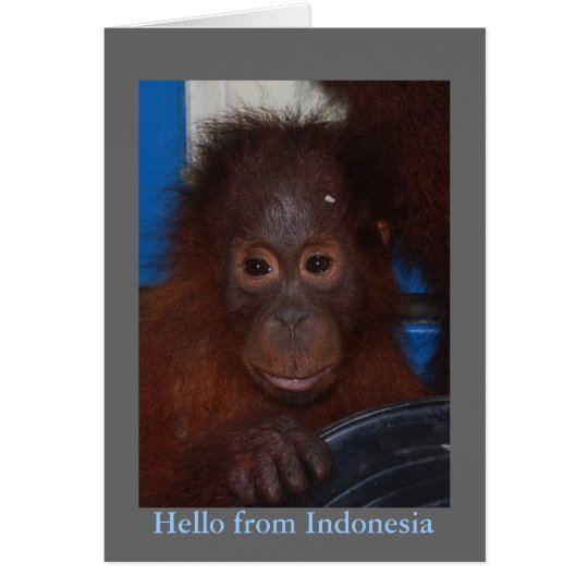 Hello from Indonesia Orangutan Photo Card