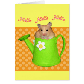 Hello hello hamster card