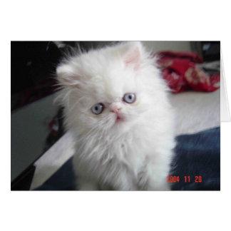 HELLO KITTY! CARD