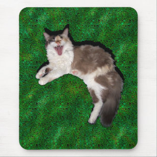 Hello, mouse! mouse pad