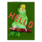 HELLO  Parrot greeting card