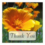 Hello Poppies Thank You Cards 13 Cm X 13 Cm Square Invitation Card
