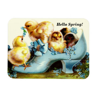 Hello Spring. Vintage Easter Chicks Gift Magnets