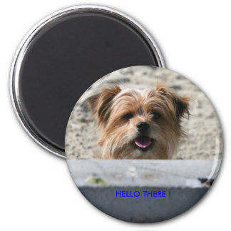 HELLO THERE ! 6 CM ROUND MAGNET