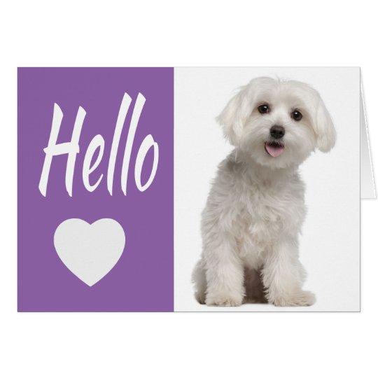 Hello White Maltese Puppy Dog Purple Heart Notecar