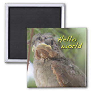 Hello World Magnet