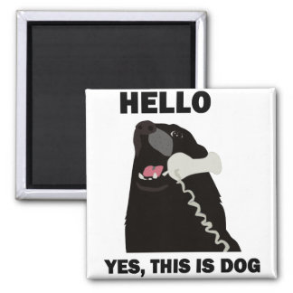 HELLO YES THIS IS DOG telephone phone Square Magnet